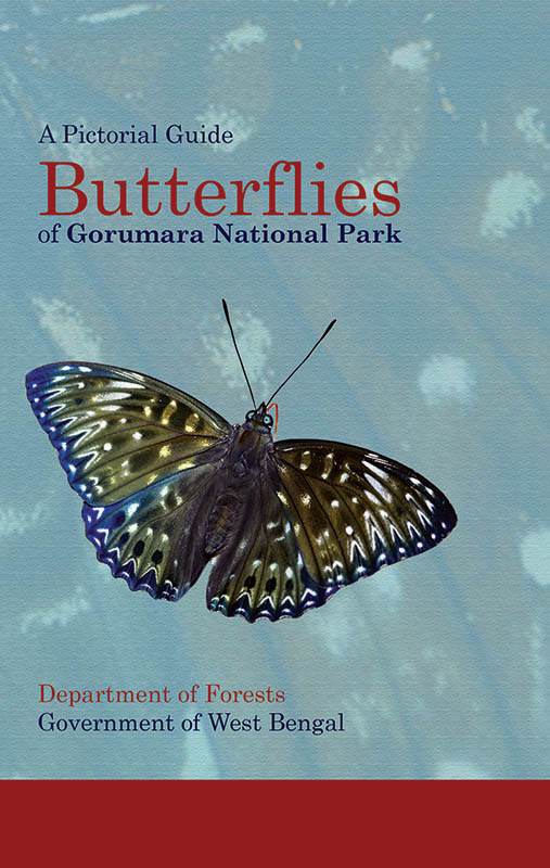 Butterflies of Gorumara Cover