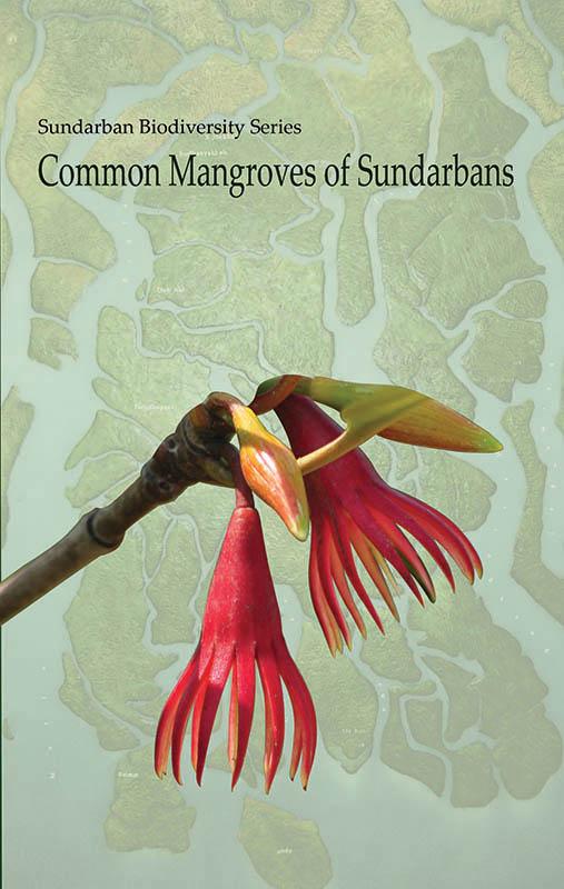 Cover_Mangrove _English