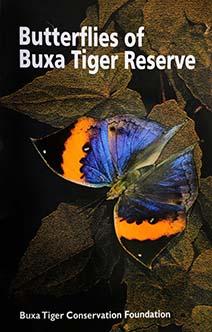 Butterflies of BuxaTiger Reserve